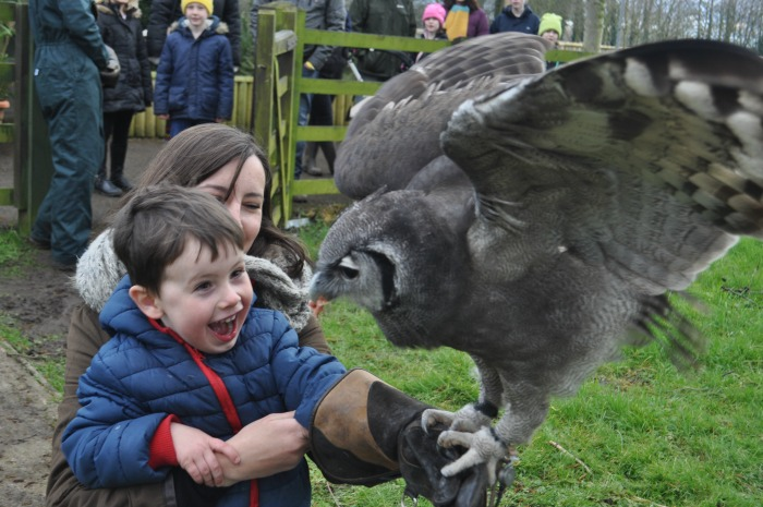 Lambing and zoo weekend - Leo Smith, 3, and mum Charlie Smith from Chester with 'Milky'