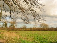 Supreme Court judges allow 170 homes plan for green gap land in Willaston