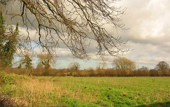 Supreme Court - Land off Moorfields in Willaston, pic by Espresso Addict under creative commons