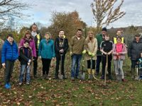 Willaston residents plant 250 trees at Lettie Spencer field