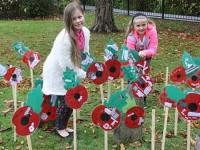 Brine Leas pupils in Nantwich create own poppy field
