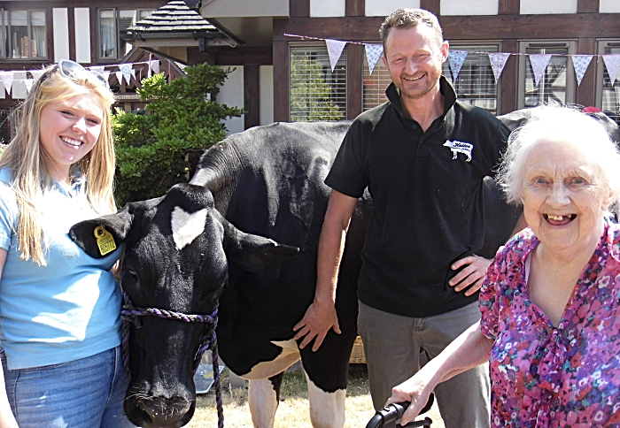 Midnight cow and owners and resident at Richmond Village