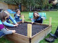 Millfields Primary School children go green fingered to create garden