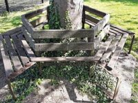 """Commemorative bench in Nantwich removed as """"beyond repair"""""""