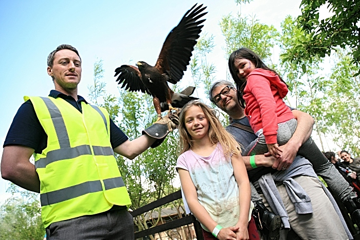 Mitch Doyle shows bird of prey to Leila Constable, Edie Carey and Matthew Carey (1)