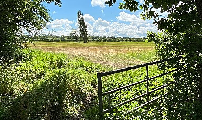letter - Muller Development - Nantwich South land near Broad Lane (2) (1)