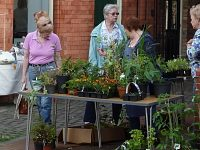 Nantwich Museum to stage Plant and Book Sale on June 9