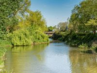 Nantwich Museum unveils summer events around 'River Weaver' exhibition