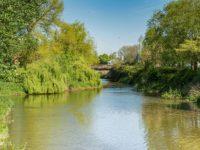 Nantwich Museum unveils summer events around 'River Weaver' exhibition