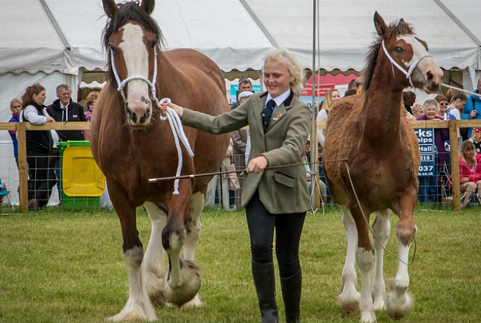 Nantwich Show 2016 - 3, pic by Nantwich Events Photography