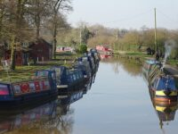 "Canal's ""Shroppie Shelf"" in Nantwich emerges during pandemic"