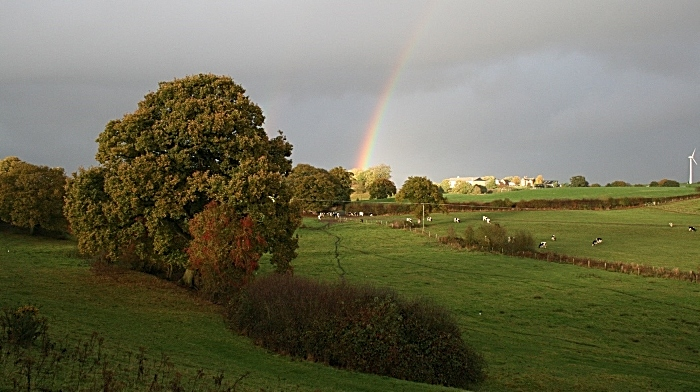Nature Improvement Area to be destroyed - Cheshire. credit Matt Lawton (1)