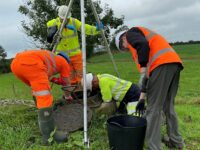Endangered newts in Nantwich rescued by water engineers