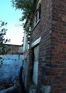 property O'Shaw Street - pic 1