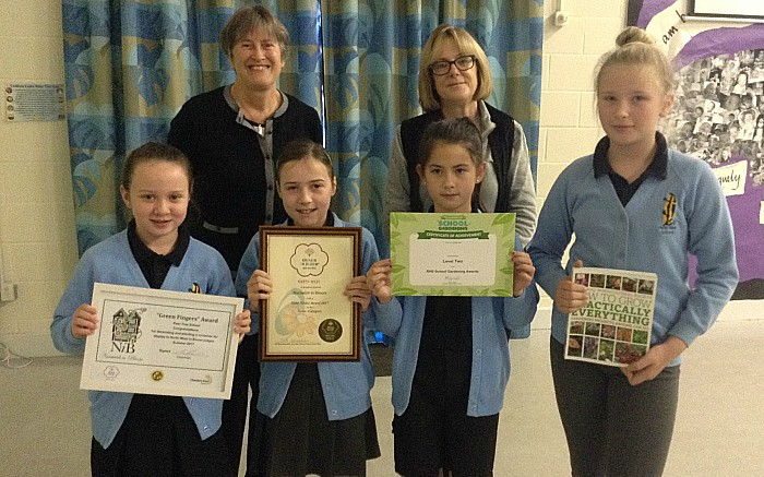 Pear Tree pupils, hedgehogs, Nantwich in Bloom