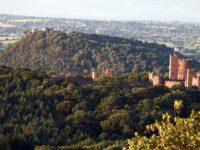"""Cheshire Sandstone Ridge designation """"not enough"""", says Wildlife Trust"""
