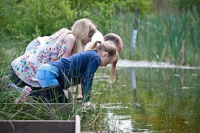 Cheshire Wildlife Trust breakfast challenge - Pond dipping (c) Matthew Roberts