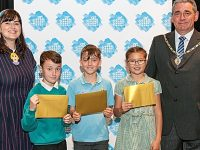 Acton youngster crowned art champion in schools contest