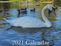 Group produces fund-raising calendar for Crewe's Queens Park