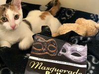 RSPCA Stapeley to stage Masquerade Ball fundraiser