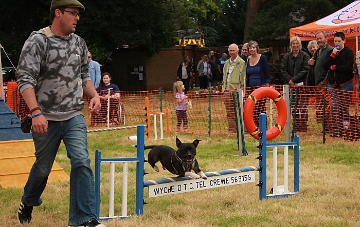 RSPCA stapeley grange summer fair 1