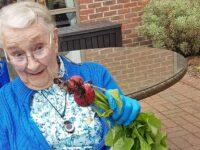 Green-fingered Richmond residents produce bumper radish crop