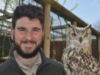 Nantwich falconer flies high after winning regional award