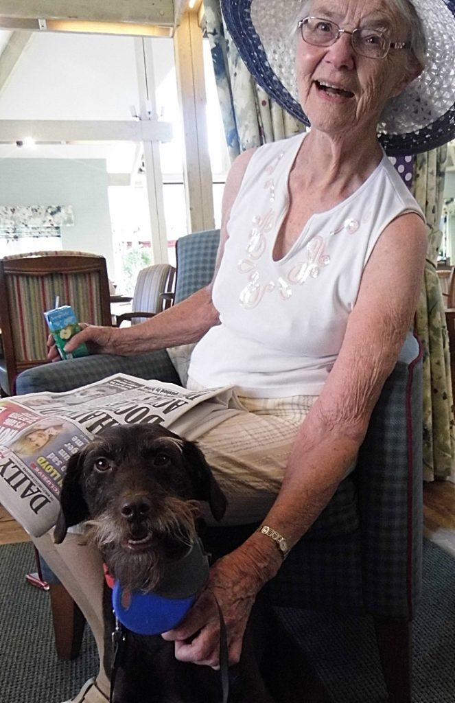 Dog - Richmond Nantwich resident Barbara Hughes with Cookie