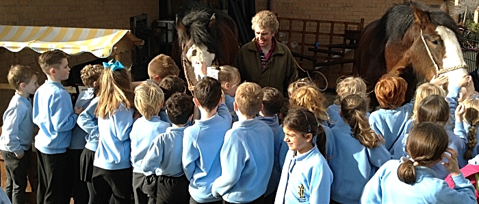 Sarah Ford shows Pear Tree Pupils the beautiful Shire Horses (1)