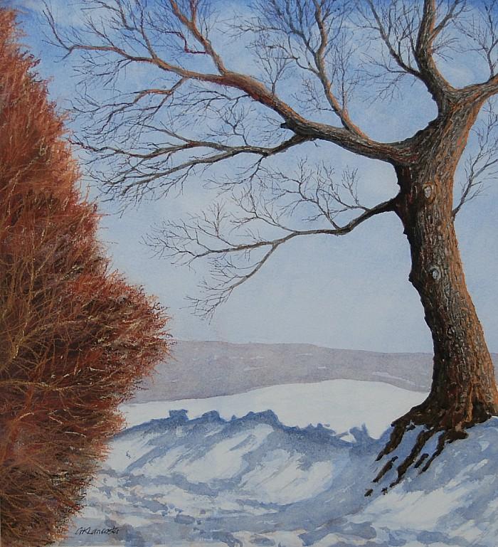 Snowy Lane - kaleidoscope 3 exhibition