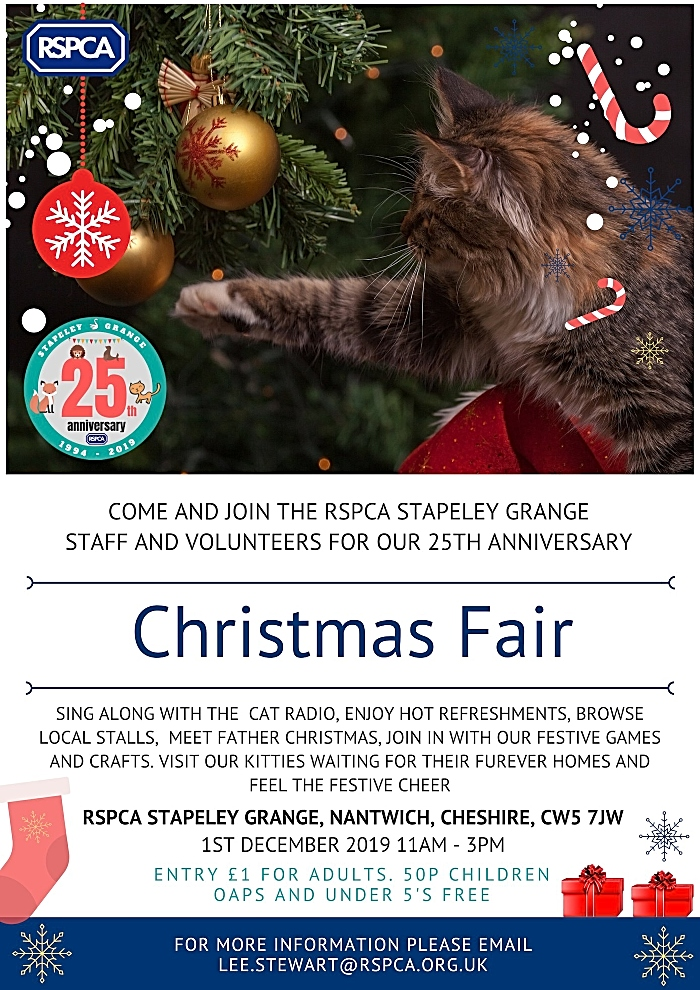 Stapeley Christmas Fair poster (1)