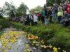 Hundreds enjoy annual Wistaston Duck and Boats race