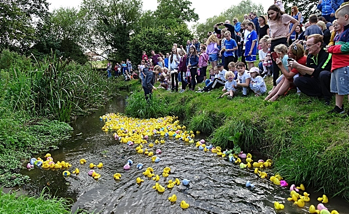 Start of the Ducks Race