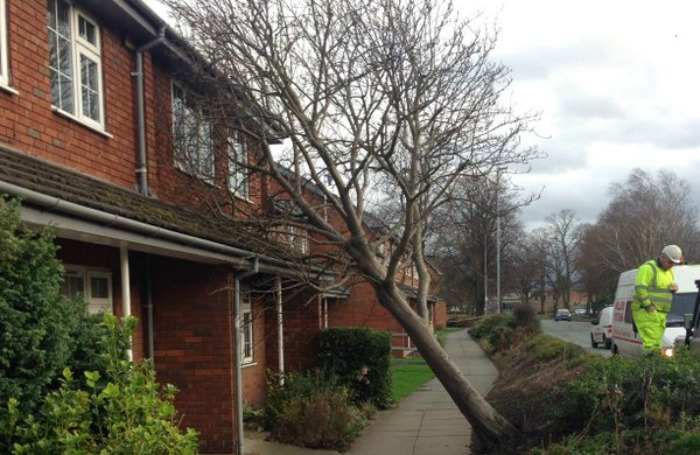Storm Frank damages homes and trees in Nantwich - picture courtesy of Cheshire Police