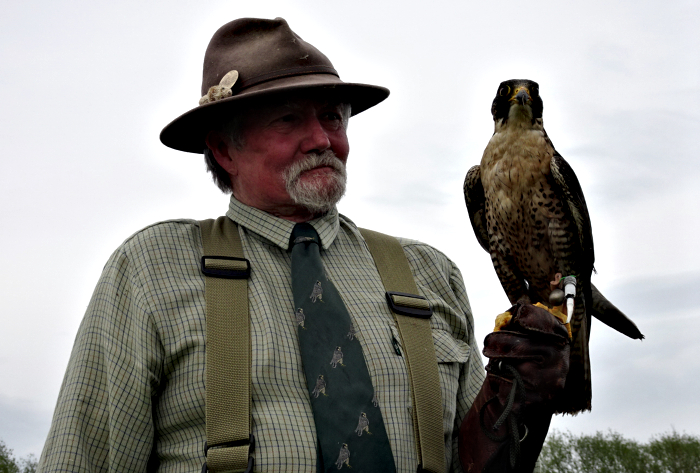 Terry Large Falconry Display (1)
