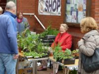 Nantwich Museum raises £210 from plant and book sale