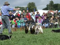 Reaseheath College Family Festival in Nantwich set for May 13
