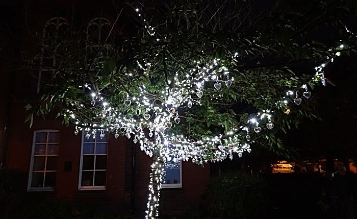 Tree of Light following its illumination (1)