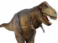 Tyrone the T-Rex to star at Reaseheath College Family Festival