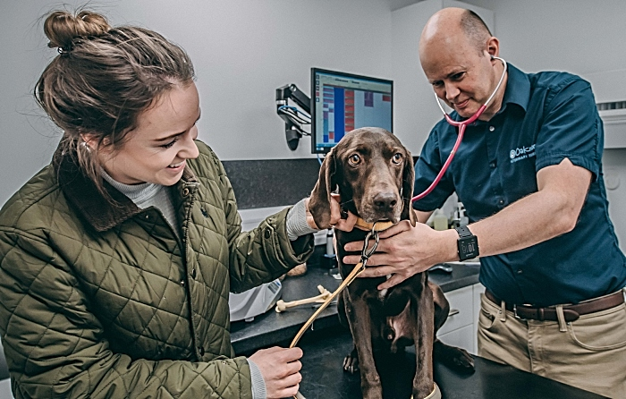 Vet Charlie Sale of Oakwood Vet Referrals checks over Cola with Cola's owner Rebecca Vickers