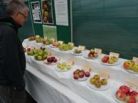 Visitors get teeth into Reaseheath Apple Festival