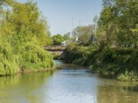 Man rescued from River Weaver after falling off bridge in Nantwich