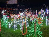 """Drive thru"" Weston Christmas Light Display proves major hit"
