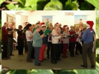 Nantwich Museum unveils Christmas celebration