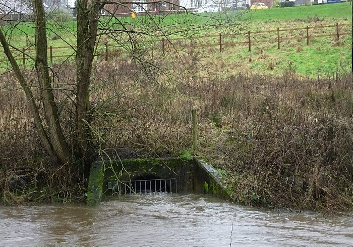 Wistaston - Wistaston Brook - storm drain is dangerously high adjacent to the new Wistaston Brook housing development (1)