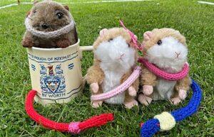 Wistaston Wormer mascots - Squeaker - Pammy - Hammy (1)