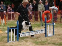 Thousands raised for Nantwich RSPCA wildlife centre