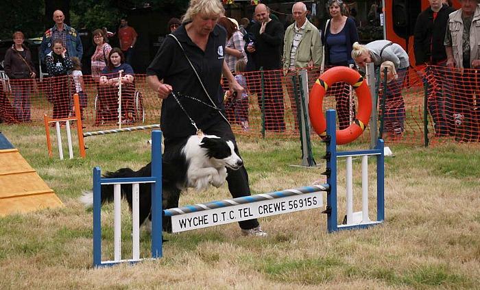 Wyche Dog Show, RSPCA Stapeley Grange wildlife centre fun day
