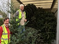St Luke's Hospice Christmas Tree Collection raises more than £27,000