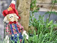 Barbridge villagers create Scarecrow trail for lockdown children